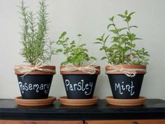 Clay Pots painted with chalkboard paint! So easy to do. My girls want to make an indoor garden. This is perfect. :) such a cute idea for your herbs pots! Hobby Design, Diy Design, Design Ideas, Do It Yourself Inspiration, Herb Pots, Herb Planters, Garden Pots, Balcony Garden, Clay Pot Crafts