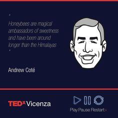 Andrew Coté #quote #TEDxVicenza #PlayPauseRestart #TEDxVicenza #TEDxVicenza16 #TEDx #event #Vicenza #Vicenzacity #tedxtalk #tedtalks #vicenzainandout #igersvicenza #igersveneto #igersitalia #Vicenza #veneto #visitveneto #PlayPauseRestart  #newyork #newyorker #newyorktimes  #humansofnewyork #newyork_instagram #bees #hive #honey
