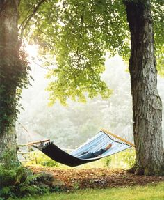 My dream, a hammock between two shade trees, with no bugs or flies or bees about and the fragrant smell of flowers drifting by and then a nap