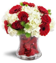 Dazzle her senses with this indulgent display of your true romance! Deep red roses and Gerbera daisies are arranged with white hydrangea in our unique double-walled vase filled with real rose petals! It's an over-the-top statement of your love, and sure to get a real