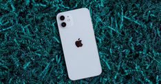 iPhone 12 camera tips: How to take your best photos yet - CNET Camera Tips, Camera Hacks, Camera Comparison, Shooting In Raw, Rule Of Thirds, Best Phone, Camera Settings, Apple Tv, Equality