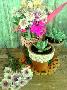 Flores e suculentas!