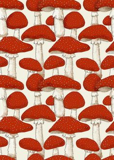 New wallpaper pattern red inspiration ideas Motifs Textiles, Textile Patterns, Deco Floral, Motif Floral, Surface Pattern Design, Pattern Art, Red Pattern, Red And White Mushroom, White Mushrooms
