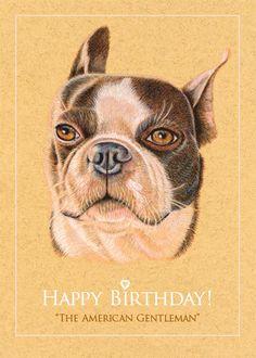 Boston Terrier Birthday Card by roxy5235 on Etsy, $2.99