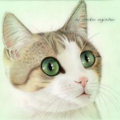 びっくり!!! I Love Cats, Cute Cats, Chats Image, Bunny Rabbits, All About Cats, Kitty Cats, Animal Paintings, Dog Art, Colored Pencils