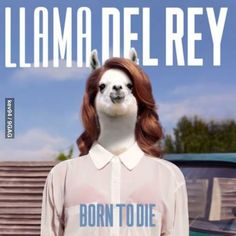 "Lana Del Rey Born To Die LP. Breakthrough Album from Singer-Songwriter Lana Del Rey! Includes ""Video Games"" and ""Summertime Sadness! Lana Del Ray, Born To Die, Pop Rock, Summertime Sadness, Summertime Summertime, Vinyl Lp, Vinyl Records, Vinyl Music, American Apparel"
