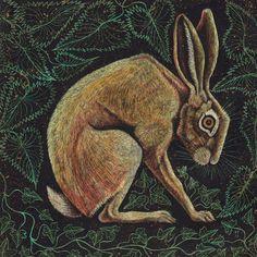 Hare Trio by Vikkki on DeviantArt Jack Rabbit, Rabbit Art, Hare Pictures, Hare Images, Hare Illustration, Rabbit Tattoos, Bunny Art, Watercolor Animals, Wildlife Art