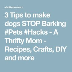 3 Tips to make dogs STOP Barking #Pets #Hacks - A Thrifty Mom - Recipes, Crafts, DIY and more