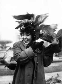 British born American actress Elizabeth Taylor feeding the pigeons in Trafalgar Square, London. (Photo by Chris Ware/Getty Images) Elizabeth Taylor, Queen Elizabeth, Rare Photos, Vintage Photos, Old Photos, St Exupery, Michael Wilding, Chris Ware, Violet Eyes
