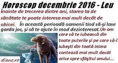 diane.ro: Horoscop decembrie 2016 - Leu