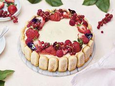 Tiramisu, Charlotte Russe, Cheesecake, Ethnic Recipes, Desserts, Food, Tailgate Desserts, Deserts, Cheesecakes