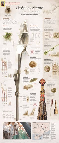 A Look into Gaudi's Design for the Sagrada Familia. (From National Geographic Magazine, December 2010) (click image link for high-res)