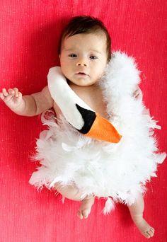 Die Federleichte - Die süßesten Halloweenkostüme für Kinder - Ein Baby im Björk-Outfit: Dieses Schwanenkostüm sieht einfach hinreißend aus, ist aber wohl nur für eine Baby-Halloween-Party geeignet, die drinnen stattfindet. Bild: © custome-works...