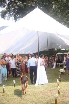 Foto: Bel Junqueira  Casamento Jana e Aju