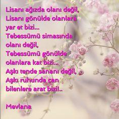 #tasavvuf # mevlana
