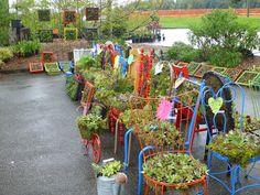 Snohomish County Master Gardener Plant Sale 2012