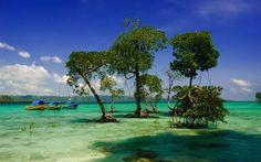 Andaman Islands, India - Sourav Saha Photography