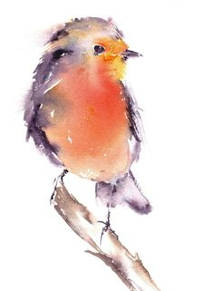 Buy Robin, Watercolours by Anjana Cawdell on Artfinder. Discover thousands of other original paintings, prints, sculptures and photography from independent artists.