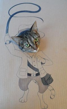 Cats wearing 'head through a hole' cardboard costumes