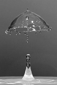 Workshop - Montage photo : Une goûte d'eau qui forme un parapluie au moment de l'impact avec une flaque