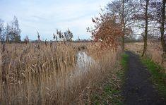 De mooiste wandelgebieden in Brabant - My Footprints Footprints, Country Roads, Trays