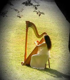 600x600_1334705332146-harp91draftimage3.jpg (528×600)