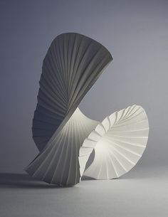 Richard Sweeney, Motion Pleat The way that the folds of the paper have then been folded again give off the impression of movement within the sculpture. Architecture Origami, Arte Linear, Affordable Art Fair, 3d Studio, Paper Folding, Book Folding, Vanitas, Sculpture Art, Paper Sculptures