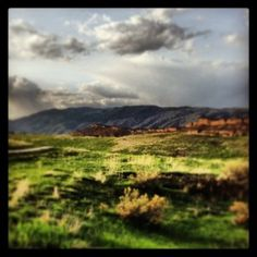 One of my favorite spots to hike is Bobcat Ridge in Fort Collins. Nobody is ever there, there's a lot of active wildlife (and you can see signs of it!), there's horseback riding, mountain biking, and hiking. Plus there's archaeology there, including a historic cabin you can hike to and hang around.