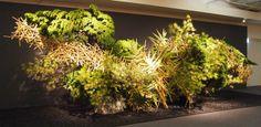 草月いけばな展「花おどる」 2013年11月 東京・日本橋髙島屋 (竹、かいづかいぶき、じゃのめ松、たびびとの木、椿) #ikebana #sogetsu