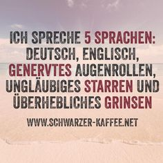 I can speak 5 languages: German, English, Annoyed Eye Rolling, Unbelieving Staring and Arrogant Smirking. True Quotes, Words Quotes, Funny Quotes, German Quotes, Funny As Hell, Funny Picture Quotes, More Than Words, True Words, Funny Moments