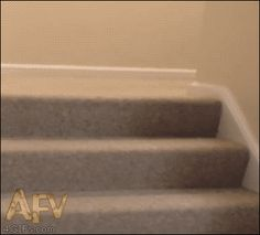 """""""We are the champio-"""" """"NO ONLY I AM THE CHAMPION.... SURF DOWN THE STAIRS OR SOMETHING!!!!!!!"""""""