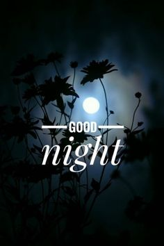 Good Night Friends Images, Good Night Thoughts, New Good Night Images, Good Night Hindi, Good Night Prayer, Good Night Blessings, Good Night Messages, Good Night My Friend, Beautiful Good Night Quotes
