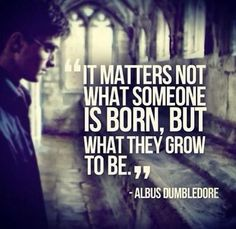 """It matters not what someone is born, but what they grow to be."" - Harry Potter"