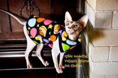Schen Geheimnis PIK - Sphynx Katze Kleidung