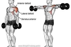 Shoulder workouts will build the foundations for everything we do. Here are 7 shoulder workouts for beginners to do at the gym: Lat Workout, Dumbbell Workout, Workout Guide, Shoulder Mass Workout, Elevación Frontal, Sports Physical Therapy, Bodybuilding, Build Muscle Fast, Bodybuilding Workouts