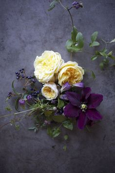 Max Gill designing with Clematis and Roses