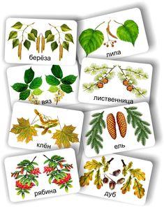 домино деревья 6