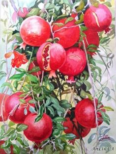 Гранаты.... - Козлова Алевтина Pomegranate Art, Paisley Art, Botanical Tattoo, Fruit Painting, Country Paintings, Color Of Life, Watercolor And Ink, Decoupage, Watercolor Paintings