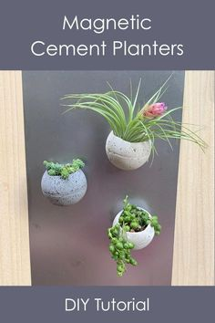 How to make these neat little planters that you can hang on a magnet board or refrigerator. These are super easy to make. Includes a video tutorial.