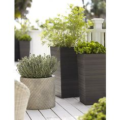 Tidore  Planters in Garden, Patio | Crate and Barrel