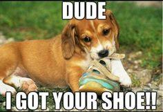 I Got Your Shoe
