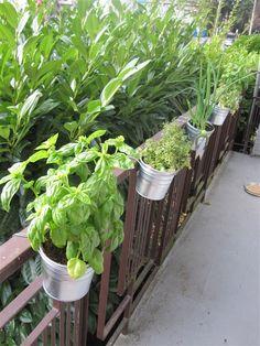 DIY Balcony Railing Planter: Decorative Planter Ideas - Unique Balcony & Garden Decoration and Easy DIY Ideas Decorative Planters, Diy Planters, Garden Planters, Planter Pots, Balcony Gardening, Planter Ideas, Hanging Planters, Herb Garden, Balcony Railing Planters