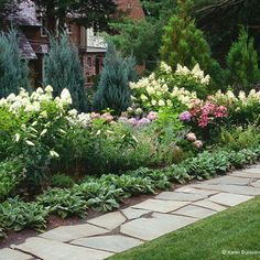 Garden Ideas North Carolina pachysandra = evergreen groundcover. shade & sun. | > outdoors at