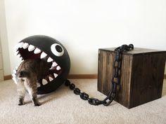 Le directeur d'une entreprise d'ameublements pour chat, passionnés de félins et de Mario Bros, a entrepris la construction d'un panier original en forme de Chain Chomp, le célèbre chien métallique ennemi de Mario.