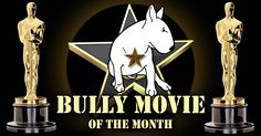 #BullTerrier Movie of the Month Awards WELCOME TO BULLYWOOD! Is your K9 the next Humphrey BULLgart? BULLY Lugosi? Enter, upload and vote for your Bully Movie of the Month for March 2016 below. All winners will receive a Milo & Ze Bully Movie of the Month Award Certificate and the TOP BULLY Movie will appear as the #Bully Movie for March on Milo's Bull Terrier Youtube Channel. Good luck to all entrants,  All the best, Milo