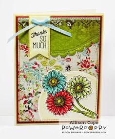 gerbera daisies images poppy cards gerbera poppies