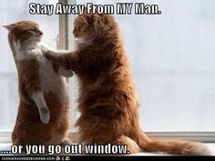 Stay Away From MY Man.  ....or you go out window.