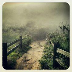 Elfin Forrest Trail.