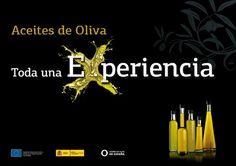 """""""Los Aceites de Oliva son parte fundamental de la Dieta Mediterránea. En España crece el olivar más grande del mundo. En él se cultivan 260 variedades de o"""