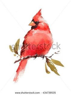 Dropbox - stock-photo-watercolor-bird-red-cardinal-hand-painted-illustration-isolated-on-white-background-434739535.jpg